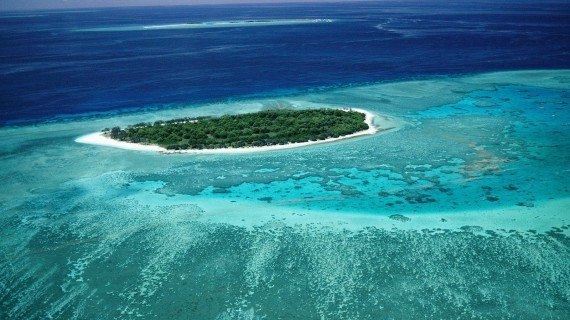 Lady_Musgrave_Island_Great_Barrier_Reef1-570x320